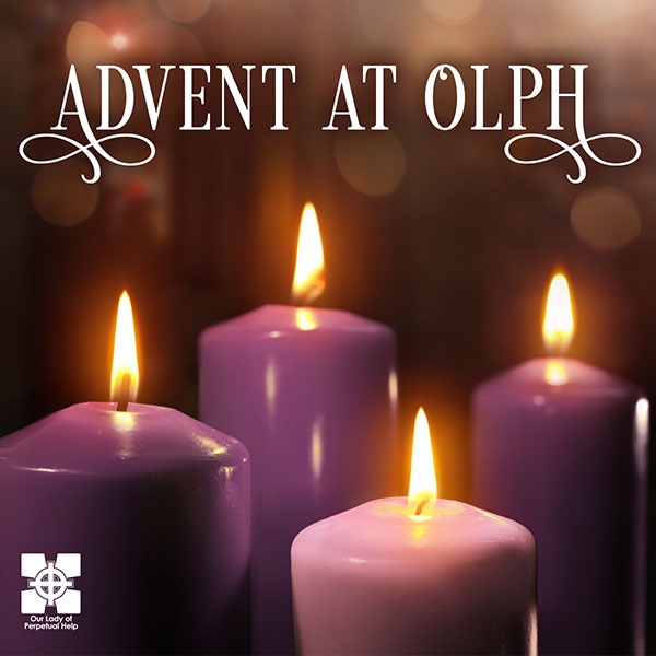 Advent Reflections Coming Soon