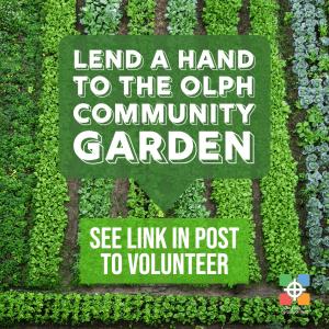 graphic advertising volunteer oportunities at OLPH's community garden