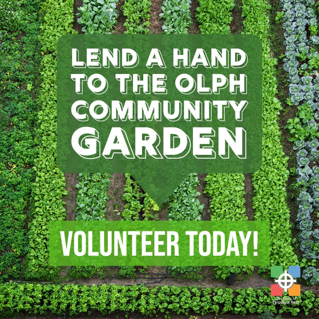 Graphic advertising volunteering oportunities at OLPH's Community Garden